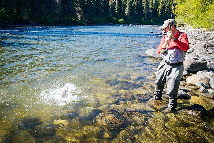 Reeling in a steelhead