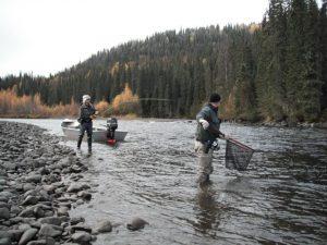 Fishing in Pairs